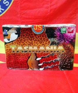PA2950 1.2INCH 100 SHOT TASMANIA R1999.99